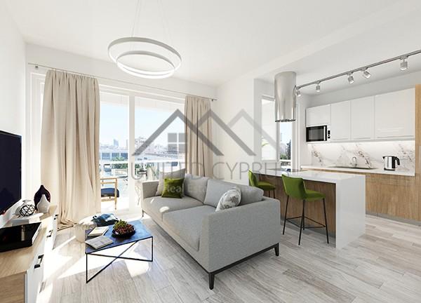 1 BR Living room & kitchen